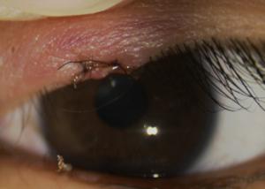 ふじの眼科クリニック